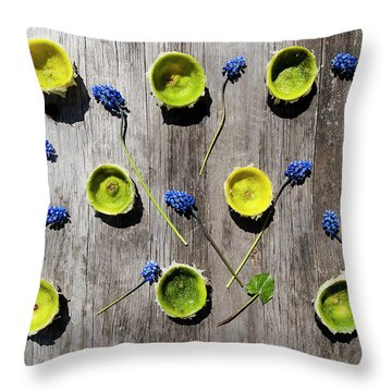 Limes Were Delicious Throw Pillow