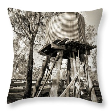 Throw Pillow featuring the photograph Limited Water Supply by Linda Lees