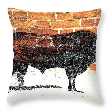 Throw Pillow featuring the photograph Limosine Bull by Larry Campbell