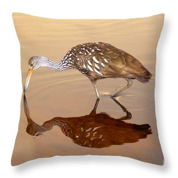 Limpkin In The Mirror Throw Pillow by David Lee Thompson