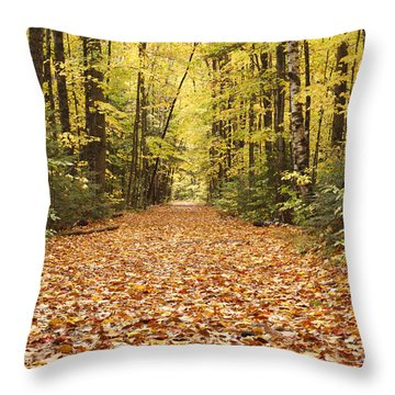 Lincoln Woods Trail  - White Mountains New Hampshire Throw Pillow