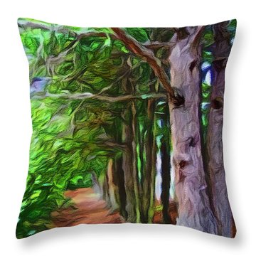 Lincoln's Path Throw Pillow
