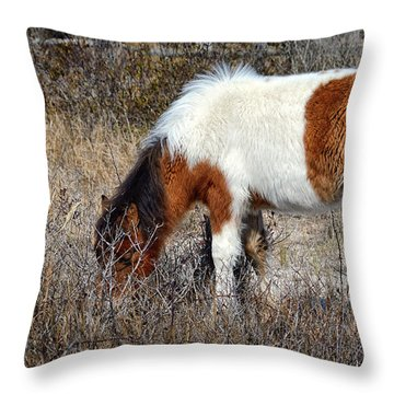 Linda Rae's Autumn Glory N2bhs-ap Throw Pillow