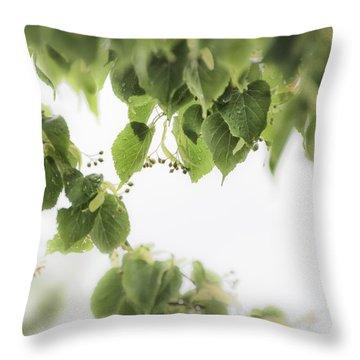 Linden In The Rain 2 -  Throw Pillow