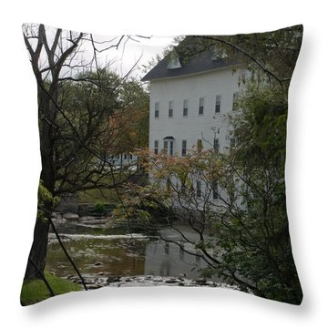 Linden Mill Pond Throw Pillow