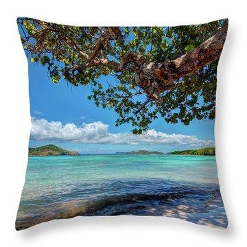 Lindquist Beach Throw Pillow