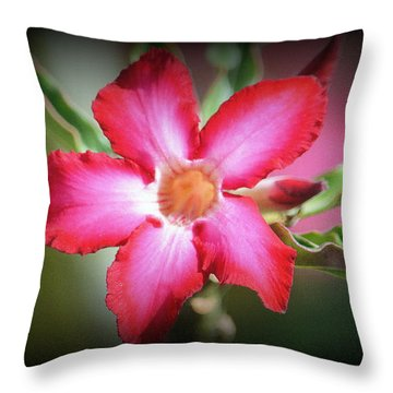 Lindsy Throw Pillow