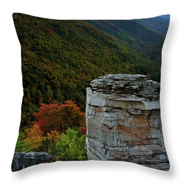 Lindy Point Throw Pillow