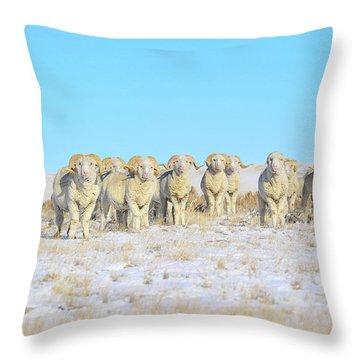 Line Em Up Rams Throw Pillow