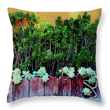 Line Of Succulents And Red Fence Throw Pillow