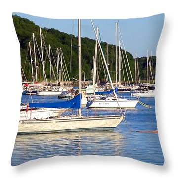 Throw Pillow featuring the photograph Lined Up by  Newwwman
