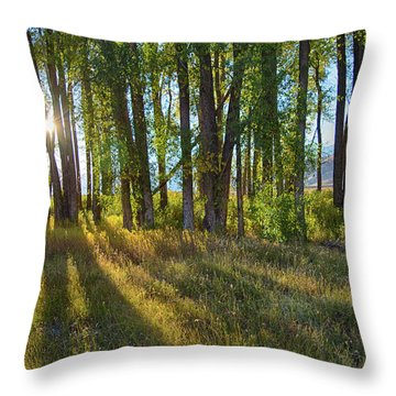 Throw Pillow featuring the photograph Lines by Mary Hone