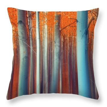 Throw Pillow featuring the photograph Lines Of Autumn by John De Bord