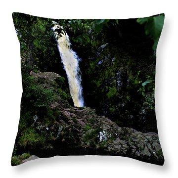 Linhope Spout Throw Pillow