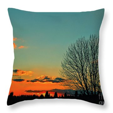 Linvilla Sunset Throw Pillow by Sandy Moulder
