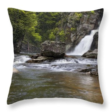 Linville Falls Basin Throw Pillow