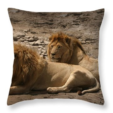 Lion Brothers Throw Pillow
