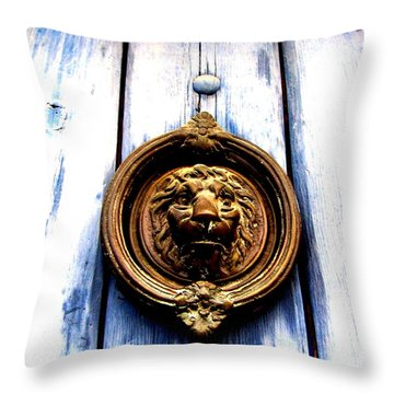 Throw Pillow featuring the photograph Lion Dreams by Michelle Dallocchio