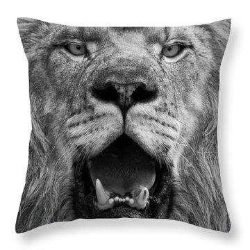 Throw Pillow featuring the photograph Lion Face by Ken Barrett