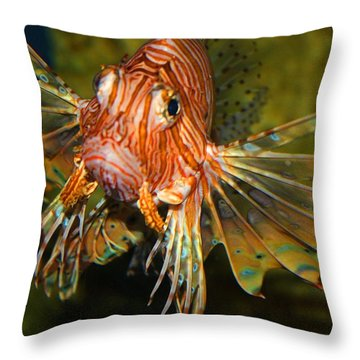 Lion Fish 2 Throw Pillow by Kathryn Meyer