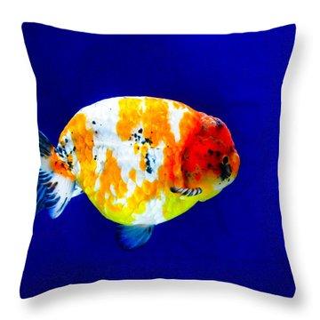 Lion Head Goldfish 3 Throw Pillow