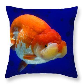 Lion Head Goldfish 4 Throw Pillow