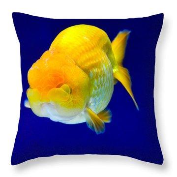 Lion Head Goldfish 5 Throw Pillow