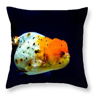 Lion Head Goldfish Throw Pillow