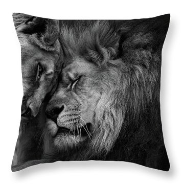 Lion In Love 2 Throw Pillow