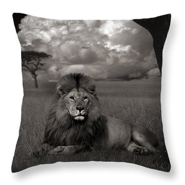 Lion In The Grass Throw Pillow