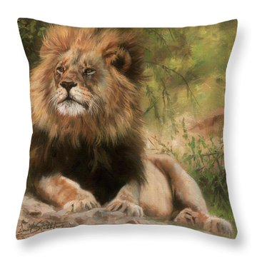 Lion Resting Throw Pillow by David Stribbling