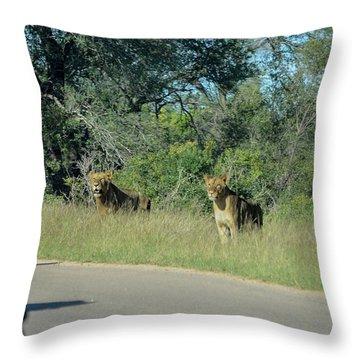 Lion Watch Throw Pillow