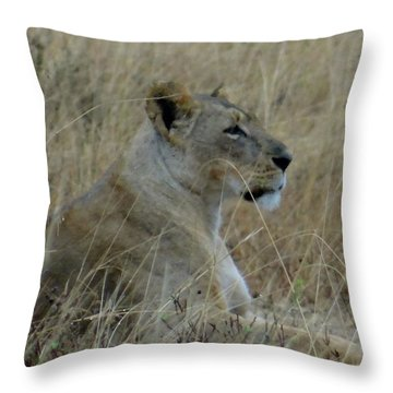 Lioness In The Grass Throw Pillow