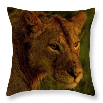 Lioness-signed-#6947 Throw Pillow by J L Woody Wooden