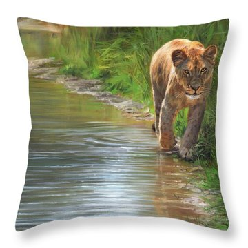 Lioness. Water's Edge Throw Pillow by David Stribbling