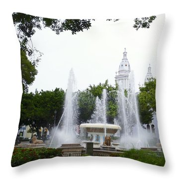Lions Fountain Wide Throw Pillow