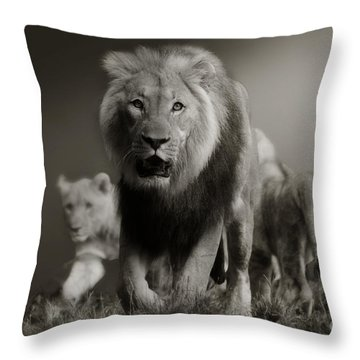 Throw Pillow featuring the photograph Lions On Their Way by Christine Sponchia