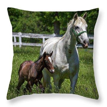 Lipizzan Horses Throw Pillow