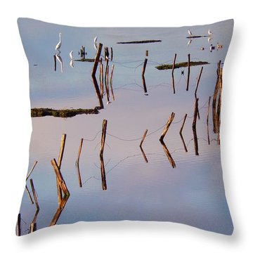 Liquid Assets Throw Pillow