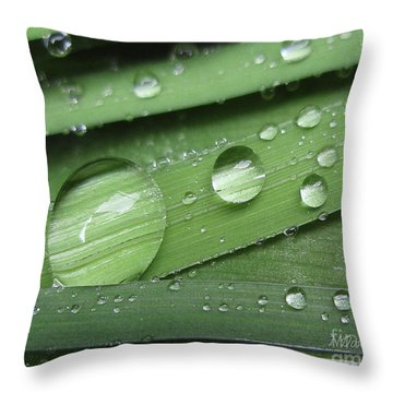 Liquid Light On Iris Throw Pillow