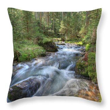 Liquid Snow Throw Pillow