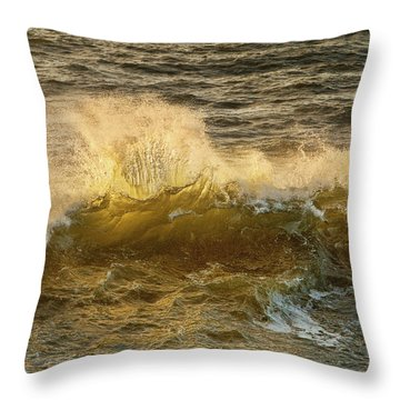 Throw Pillow featuring the photograph Liquid Sunbeam by Mary Jo Allen