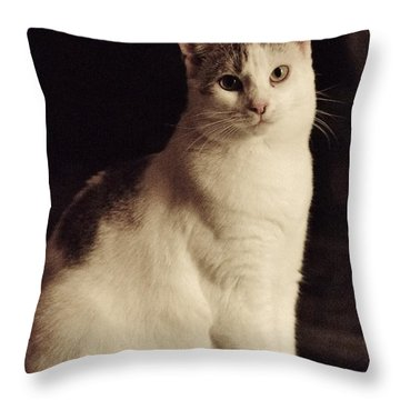 Lisa-lisa Posing Throw Pillow
