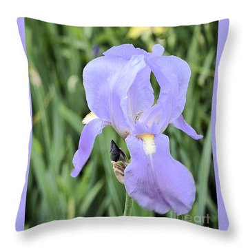 Lissy Iris Throw Pillow by Marsha Heiken