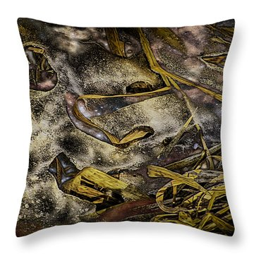 Listening To The Semifrozen Marsh Throw Pillow