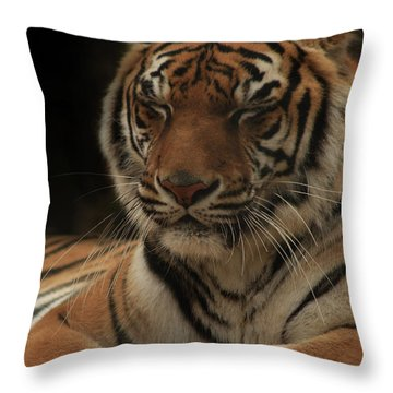 Listening...really I Am Throw Pillow by Kim Henderson