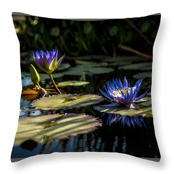 Lit From Within Throw Pillow