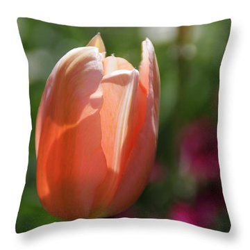 Lit Tulip 01 Throw Pillow