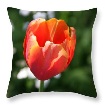 Lit Tulip 02 Throw Pillow