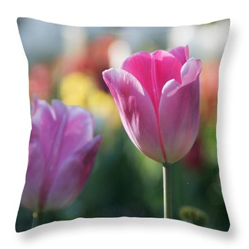 Lit Tulip 05 Throw Pillow